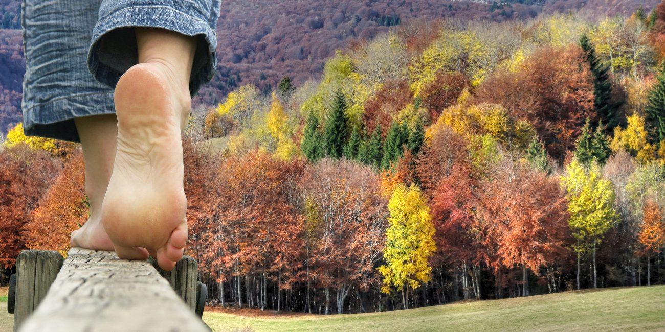 Die Balance von Körper, Geist und Seele wieder finden - Verbindung zur Natur & Yogatherapie bei Ängsten, Burnout & chronischer Stressbelastung mit Lifechangingyoga by Julia Schregel in Zürich - Meilen. Ganzheitliche Yoga Kurse, Kundalini, Yogatherapie, Gesundheit & Ernährung