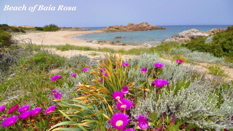 KUNDALINI YOGA & DETOX WO & WANN Sardinien, Portobella di Gallura, Beach of Baia Rosa