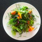 Grüner Salat - Gesunde Ernährung und Kundalini Yoga mit Julia Schregel